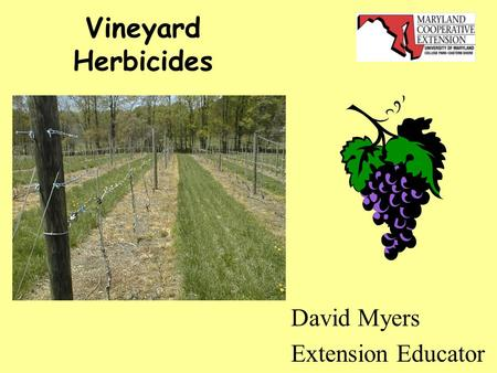 Vineyard Herbicides David Myers Extension Educator.