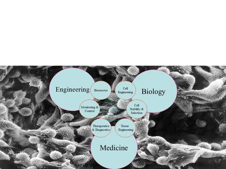 Biology Medicine Engineering Bioreactor Cell Engineering Monitoring &