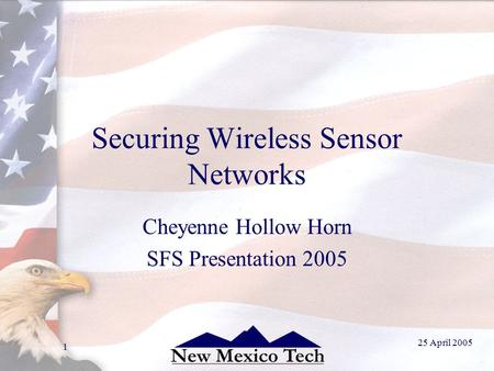 25 April 2005 1 Securing Wireless Sensor Networks Cheyenne Hollow Horn SFS Presentation 2005.