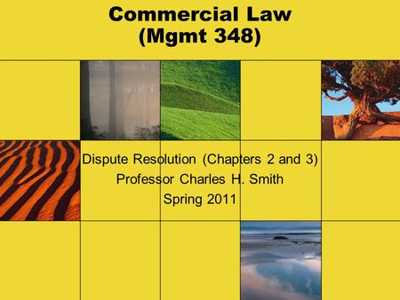 Commercial Law (Mgmt 348) Dispute Resolution (Chapters 2 and 3) Professor Charles H. Smith Spring 2011.