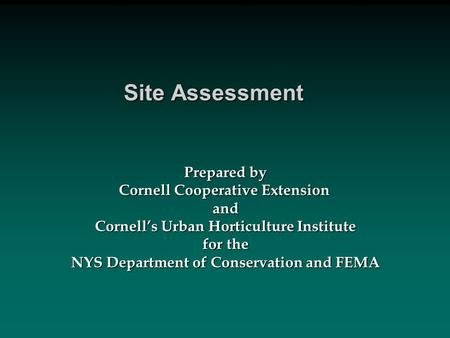 Site Assessment Prepared by Cornell Cooperative Extension and Cornell's Urban Horticulture Institute for the NYS Department of Conservation and FEMA.