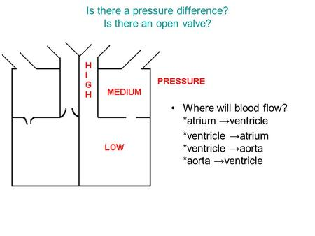 Is there a pressure difference? Is there an open valve? Where will blood flow? *atrium →ventricle *ventricle →atrium *ventricle →aorta *aorta →ventricle.