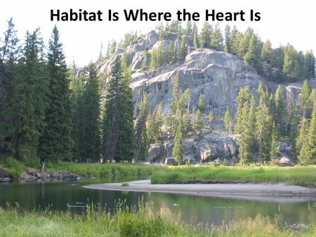 Habitat Is Where the Heart Is. What are some things we might want to learn about an animal? What does it eat? How long does it live? How many are there.