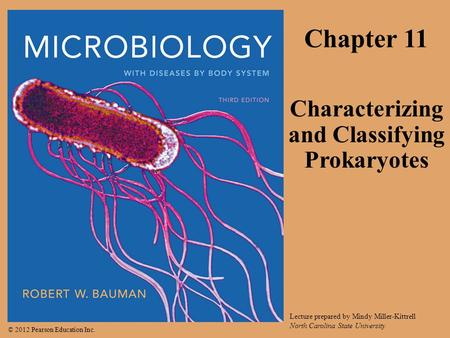 © 2012 Pearson Education Inc. Lecture prepared by Mindy Miller-Kittrell North Carolina State University Chapter 11 Characterizing and Classifying Prokaryotes.
