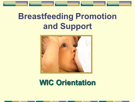 Breastfeeding Promotion and Support WIC Orientation.