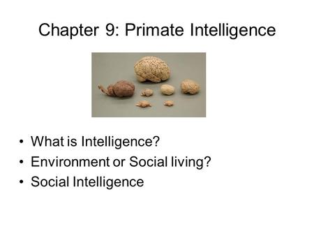 Chapter 9: Primate Intelligence What is Intelligence? Environment or Social living? Social Intelligence.