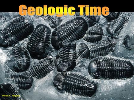 William E. Ferguson. Geologic Time A major difference between geologists and most other scientists is their attitude about time. A long time may not.