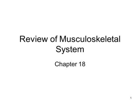 1 Review of Musculoskeletal System Chapter 18. 2 Muscle Skeletal muscle > 600 muscles in body Fascia –Epimysium – forms tendons at ends –Perimysium –