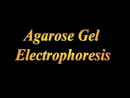 Purposes To understand the principle of Gel electrophoresis. To become familiar with the part of the electrophoresis setup.  Electrophoresis is a laboratory.