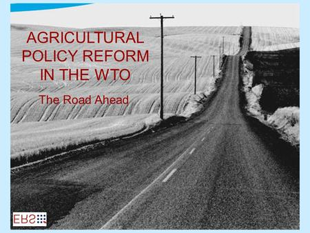 AGRICULTURAL POLICY REFORM IN THE WTO The Road Ahead.