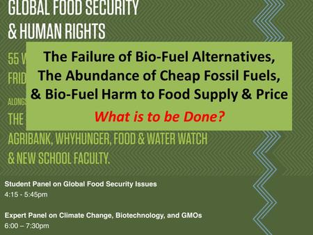 The Failure of <strong>Bio</strong>-Fuel Alternatives, The Abundance of Cheap Fossil Fuels, & <strong>Bio</strong>-Fuel Harm to Food Supply & Price What is to be Done?