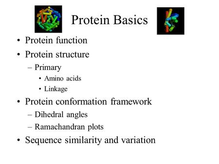 Protein Basics Protein function Protein structure –Primary Amino acids Linkage Protein conformation framework –Dihedral angles –Ramachandran plots Sequence.