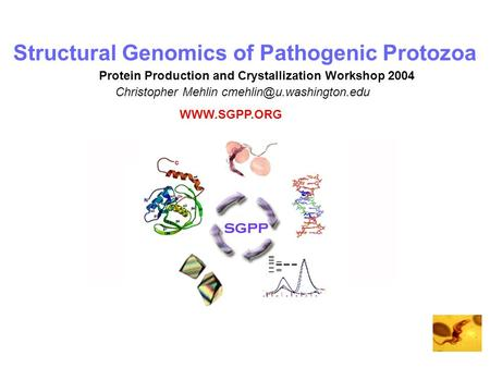Structural Genomics of Pathogenic Protozoa Christopher Mehlin Protein Production and Crystallization Workshop 2004