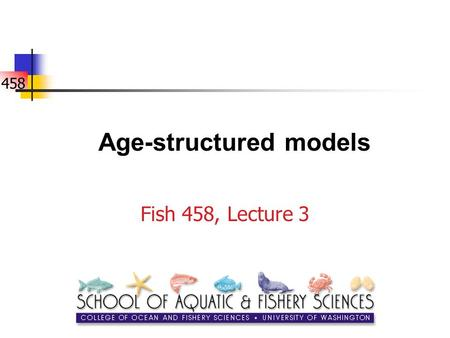458 Age-structured models Fish 458, Lecture 3. 458 Why age-structured models? Advantages: Populations have age-structure! More realistic - many basic.