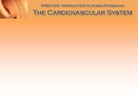 The Heart Functions of the Heart Generate blood pressure Routing blood