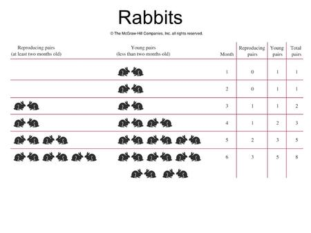 Rabbits. Rabbits: Month 1 MonthBusy Pairs Young Pairs Total Pairs 1011.