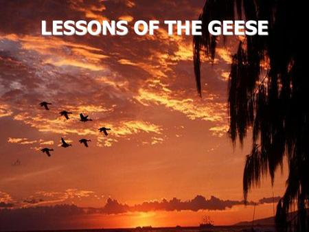 LESSONS OF THE GEESE. In the fall when you see geese heading south for the winter flying along in the V formation,