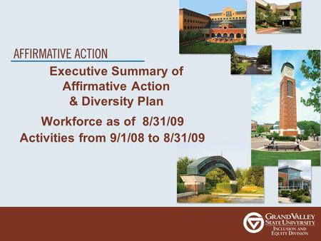 Executive Summary of Affirmative Action & Diversity Plan Workforce as of 8/31/09 Activities from 9/1/08 to 8/31/09.