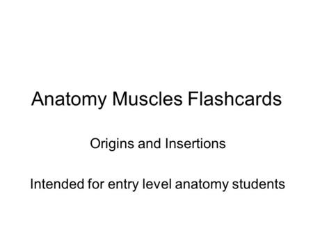 Anatomy Muscles Flashcards