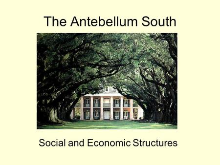 The Antebellum South Social and Economic Structures.