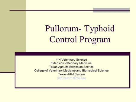 Pullorum- Typhoid Control Program 4-H Veterinary Science Extension Veterinary Medicine Texas AgriLife Extension Service College of Veterinary Medicine.