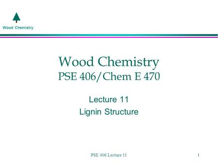 Wood Chemistry PSE 406/Chem E 470