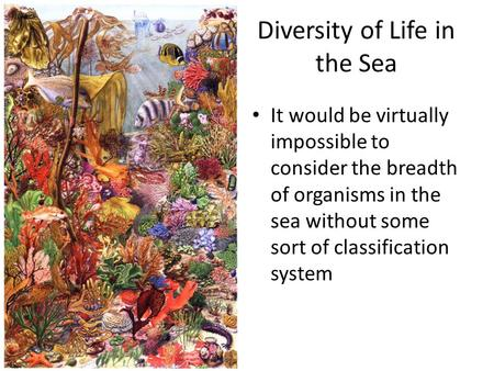 Diversity of Life in the Sea It would be virtually impossible to consider the breadth of organisms in the sea without some sort of classification system.