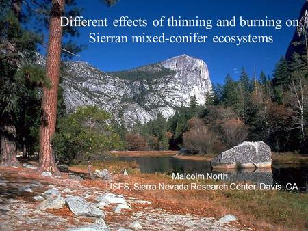Different effects of thinning and burning on Sierran mixed-conifer ecosystems Malcolm North, USFS, Sierra Nevada Research Center, Davis, CA.