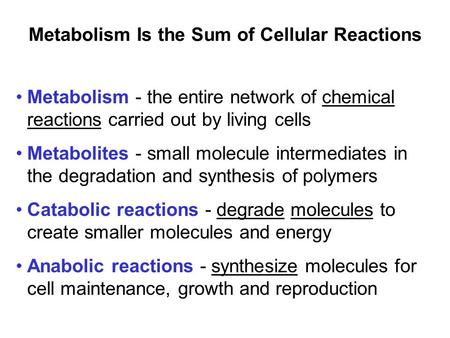 Prentice Hall c2002Chapter 101 Metabolism Is the Sum of Cellular Reactions Metabolism - the entire network of chemical reactions carried out by living.
