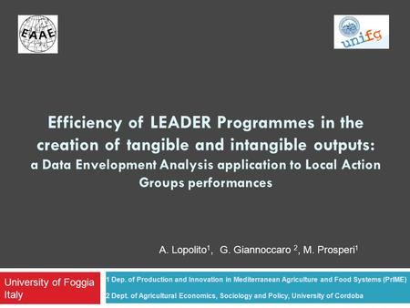 Efficiency of LEADER Programmes in the creation of tangible and intangible outputs: a Data Envelopment Analysis application to Local Action Groups performances.