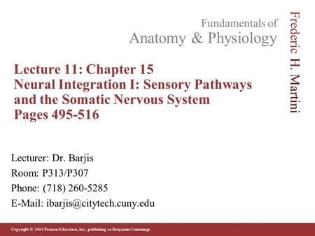 Lecture 11: Chapter 15 Neural Integration I: Sensory Pathways and the Somatic Nervous System Pages 495-516 Lecturer: Dr. Barjis Room: P313/P307 Phone:
