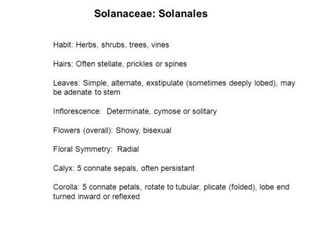 Solanaceae: Solanales Habit: Herbs, shrubs, trees, vines Hairs: Often stellate, prickles or spines Leaves: Simple, alternate, exstipulate (sometimes deeply.