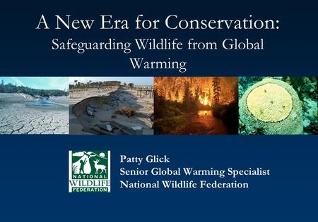 A New Era for Conservation: Safeguarding Wildlife from Global Warming Patty Glick Senior Global Warming Specialist National Wildlife Federation.