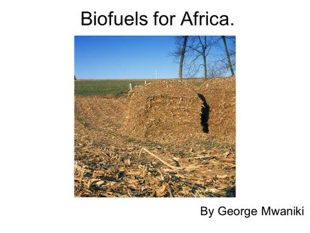 Biofuels for Africa. By George Mwaniki. Introduction Africa is the second largest continent which accounts for 22% of the earths land mass. It is home.