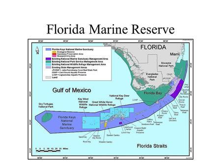 Florida Marine Reserve. Lawton, J.H., et al. (1998) Biodiversity inventories, indicator taxa and effects of habitat modification in tropical forest. Nature,
