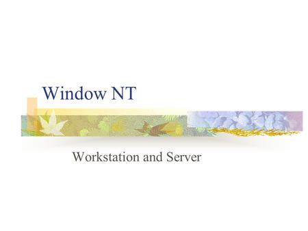 Window NT Workstation and Server. Windows NT refers to two products workstation server can act as both a client and server in a network environment.