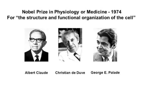 "Nobel Prize in Physiology or Medicine - 1974 For ""the structure and functional organization of the cell"" Christian de Duve George E. Palade Albert Claude."