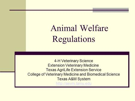 Animal Welfare Regulations 4-H Veterinary Science Extension Veterinary Medicine Texas AgriLife Extension Service College of Veterinary Medicine and Biomedical.