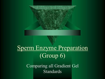 Sperm Enzyme Preparation (Group 6) Comparing all Gradient Gel Standards.