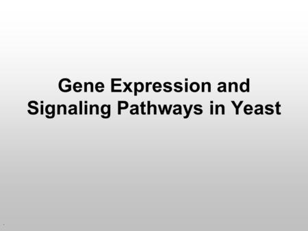 . Gene Expression and Signaling Pathways in Yeast.