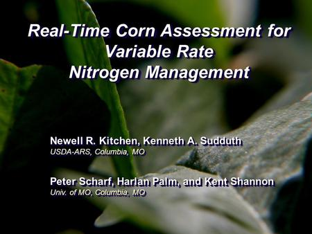 Real-Time Corn Assessment for Variable Rate Nitrogen Management Newell R. Kitchen, Kenneth A. Sudduth USDA-ARS, Columbia, MO Peter Scharf, Harlan Palm,