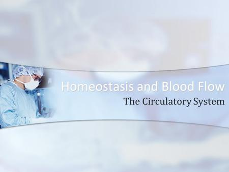 Homeostasis and Blood Flow The Circulatory System.