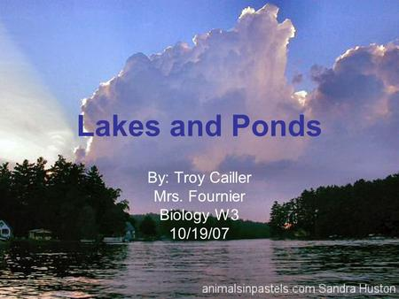 Lakes and Ponds By: Troy Cailler Mrs. Fournier Biology W3 10/19/07.