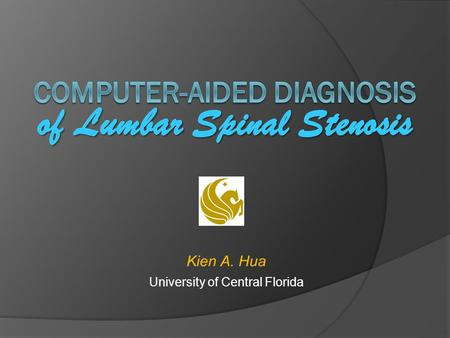 Computer-aided diagnosis of Lumbar Spinal Stenosis