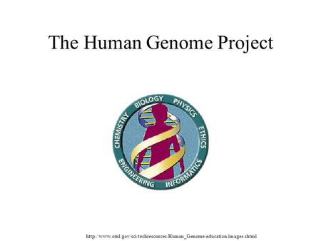 Overview of the Development of Personalized Genomic Medicine and Surgery