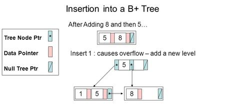 Insertion into a B+ Tree Null Tree Ptr Data Pointer * Tree Node Ptr After Adding 8 and then 5… 85 Insert 1 : causes overflow – add a new level * 5 * 158.