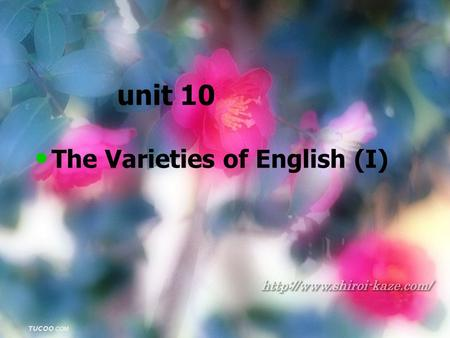 Unit 10 The Varieties of English (I). Review What are some properties of conversational implicature? What are some properties of conversational implicature?