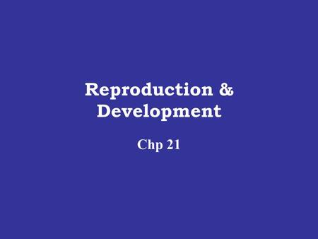 Reproduction & Development Chp 21. GAMETE FORMATION Meiotic division produces Haploid Gametes Egg Sperm.