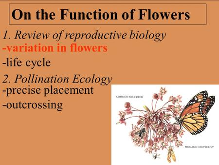 1. Review of reproductive biology 2. Pollination Ecology On the Function of Flowers -precise placement -outcrossing -variation in flowers -life cycle.