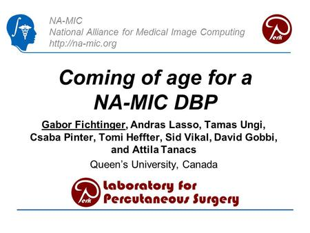 NA-MIC National Alliance for Medical Image Computing  Coming of age for a NA-MIC DBP Gabor Fichtinger, Andras Lasso, Tamas Ungi, Csaba.